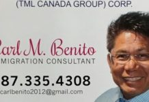 immigration consultant in Canada
